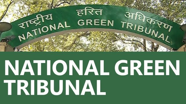 NGT Directs MoEF's Committee to Look Into Issue of Death of Elephants on Southern Railway Tracks